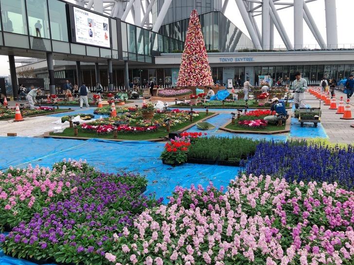 2018年 ソラマチのクリスマスイルミネーション