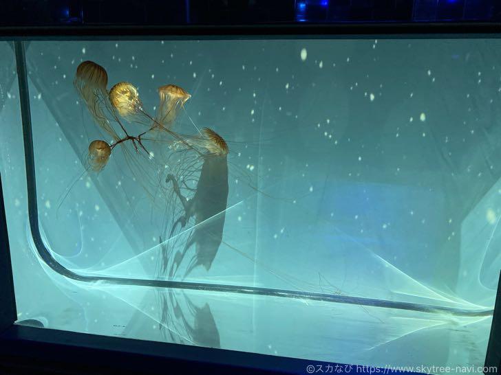 すみだ水族館 雪とクラゲ