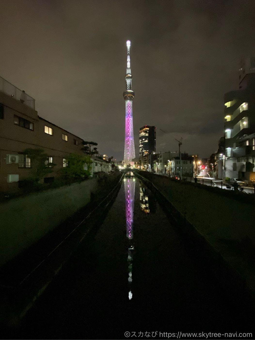 櫻坂46ライティング